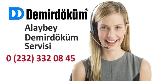 İzmir Alaybey Demirdöküm Servisi