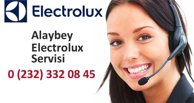İzmir Alaybey Electrolux Servisi