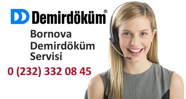 İzmir Bornova Demirdöküm Servisi