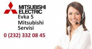 İzmir Evka 5 Mitsubishi Servisi