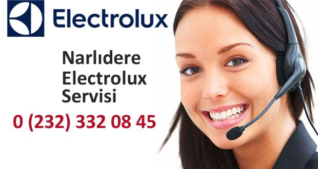 İzmir Narlıdere Electrolux Servisi